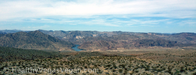 1. Arizona Nevada border Colorado river Mojave desert