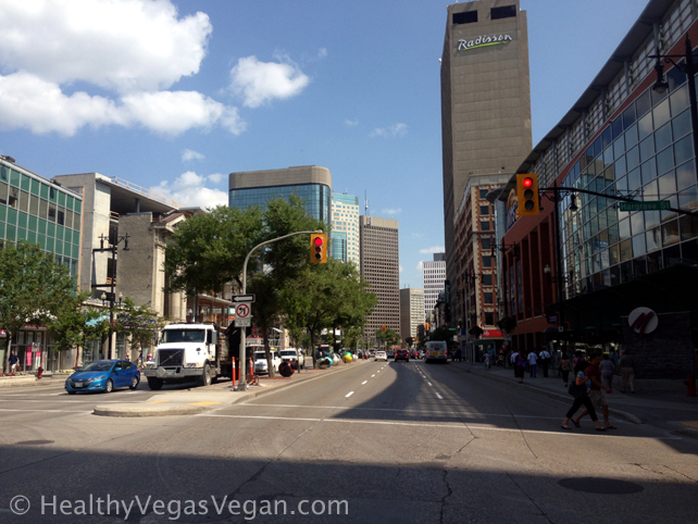 14. Winnipeg downtown 1