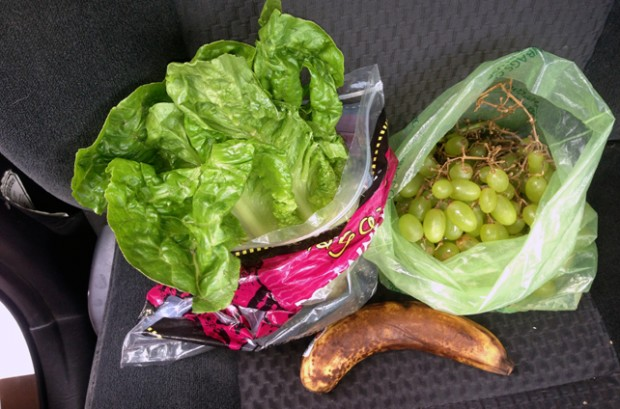 Road Trip Food: Eating Healthy in the Car without Pulling Over