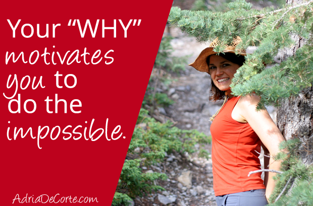"The Motivating Power of ""WHY"""