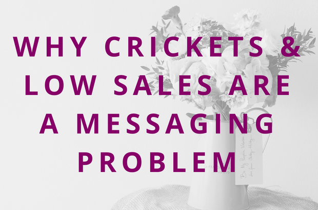 #88 Why Crickets & Low Sales Are Actually a Messaging Problem