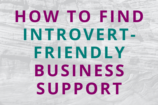 #188 How to Find Introvert-Friendly Business Support
